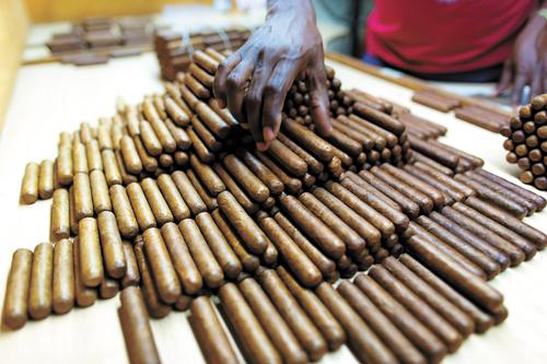 """新華社照片,哈瓦那,2015年2月27日   (國際)(10)雪茄工人的日常——探訪古巴手工煙廠 2月26日,工人在古巴首都哈瓦那的一家傳統手工雪茄工廠檢驗成品雪茄。 """"燃灰白如雪,煙草卷如茄"""",原產於美洲的這種特殊香煙經徐志摩譯作""""雪茄""""而為中國人所熟知。古巴雪茄享譽全球,每年超過5億隻雪茄從這個島國出口到世界各地。古巴雪茄因島上特殊的土壤等自然條件和長期傳承的發酵工藝,向來為全球""""雪茄客""""所熱捧。古巴最好的雪茄均為手工卷制,煙廠工人每天需要製作約百隻雪茄,經過多道工藝和篩選,最後裝箱上市。隨著古巴和美國去年年底啟動關係正常化進程,古巴雪茄有望迎來新的商機。   新華社記者劉彬攝"""